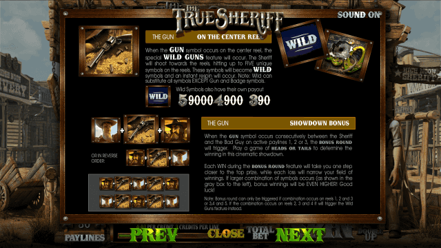 True Sheriff 5