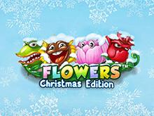 Flowers: Christmas Edition